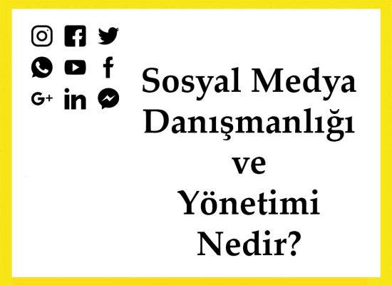 Sosyal Medya Danışmanlığı ve Yönetimi Nedir?